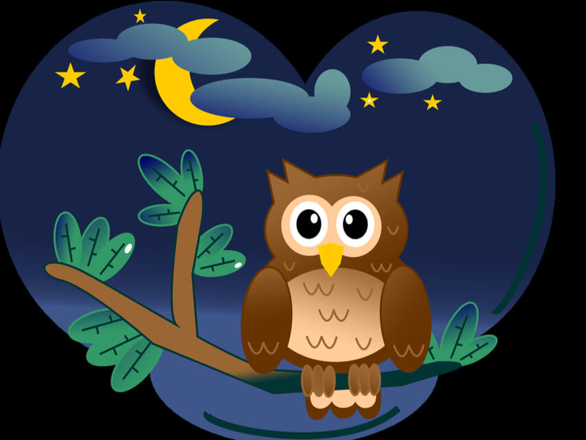 Wise Old Owl A Bedtime Meditation For Kids Mary Ostrowski Insight Timer